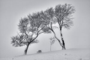 Cleeve Hill Snow 9